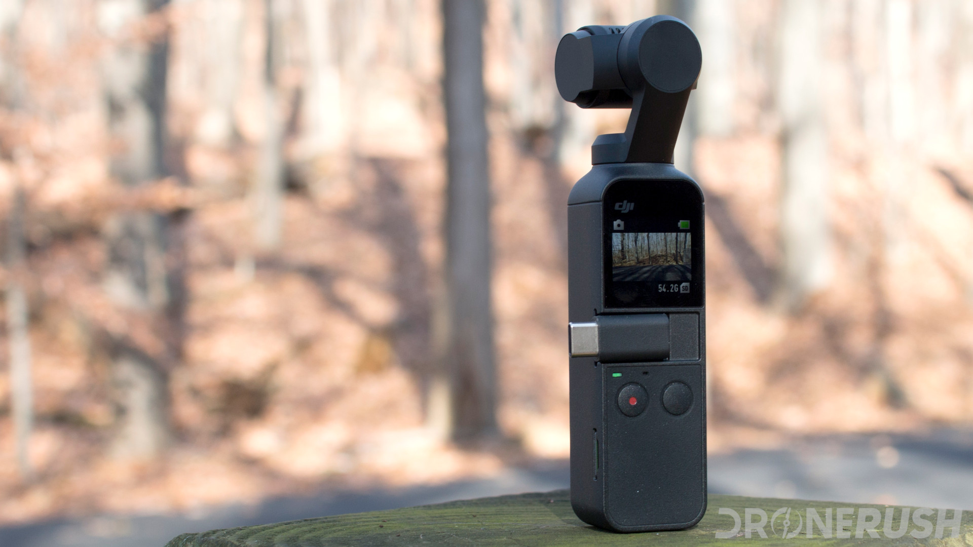 DJI Osmo Pocket forest